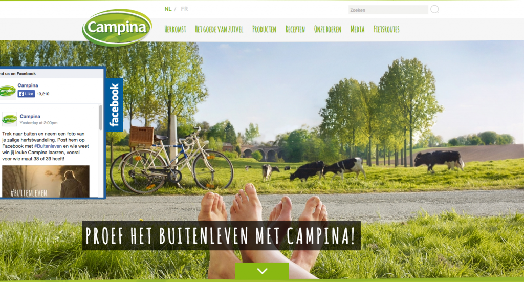 Campina zuivel web design